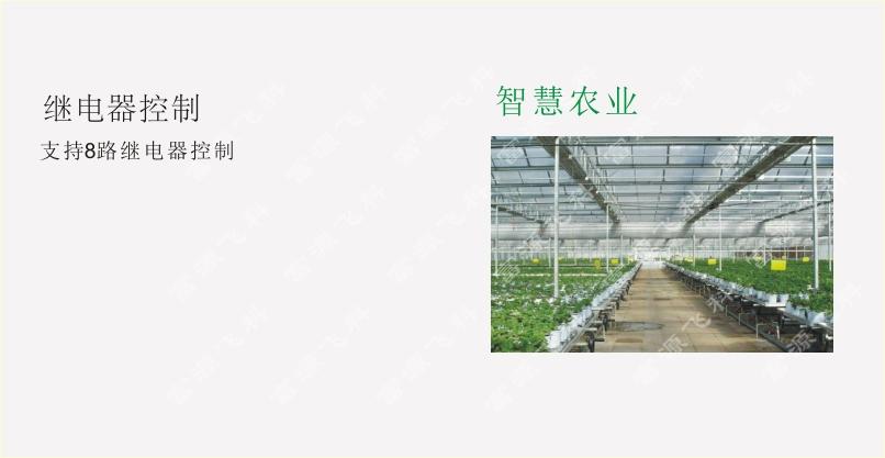 10米大型气象站 武汉富源飞科